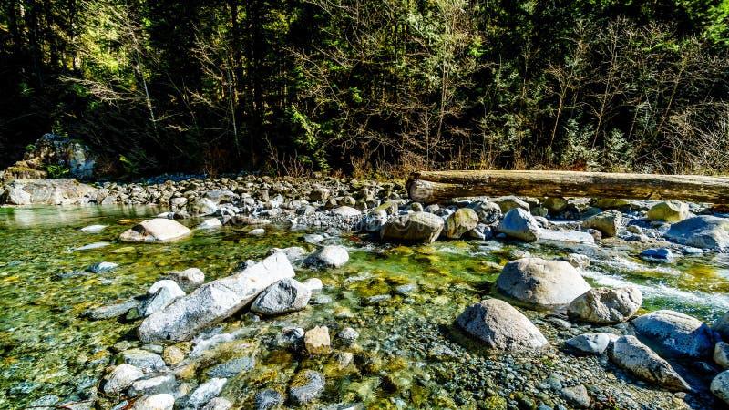 Kaskadliten vik i regionala kaskadnedgångar parkerar i F. KR. Kanada royaltyfri fotografi