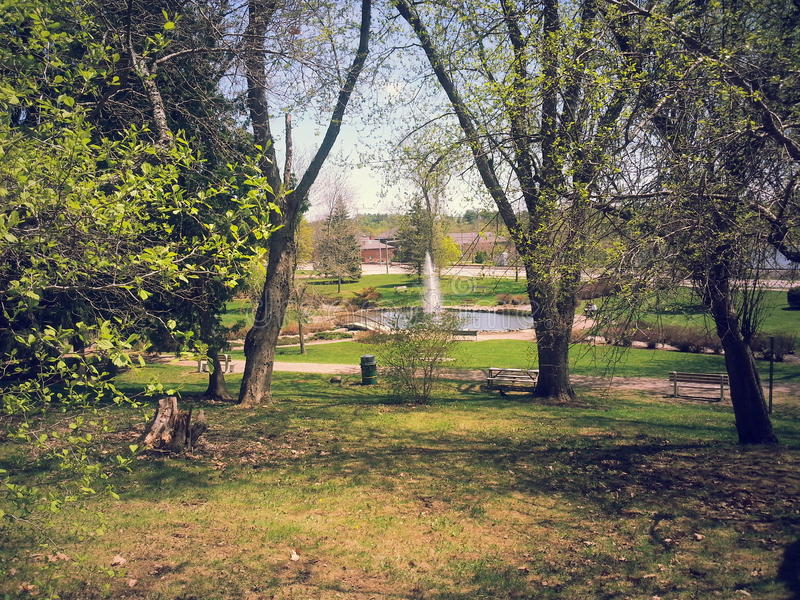 Kaskadowy park fotografia royalty free
