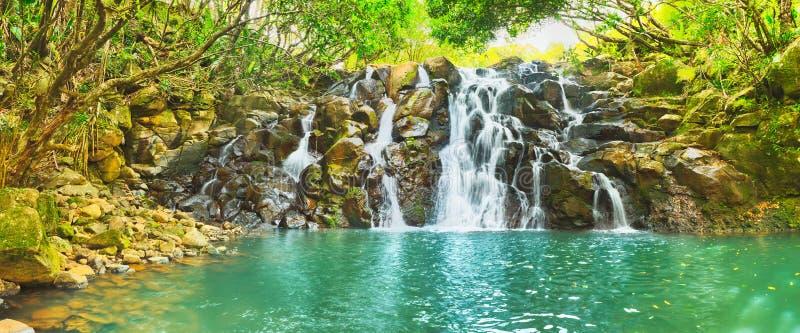 KaskadVacoas vattenfall mauritius panorama arkivbild
