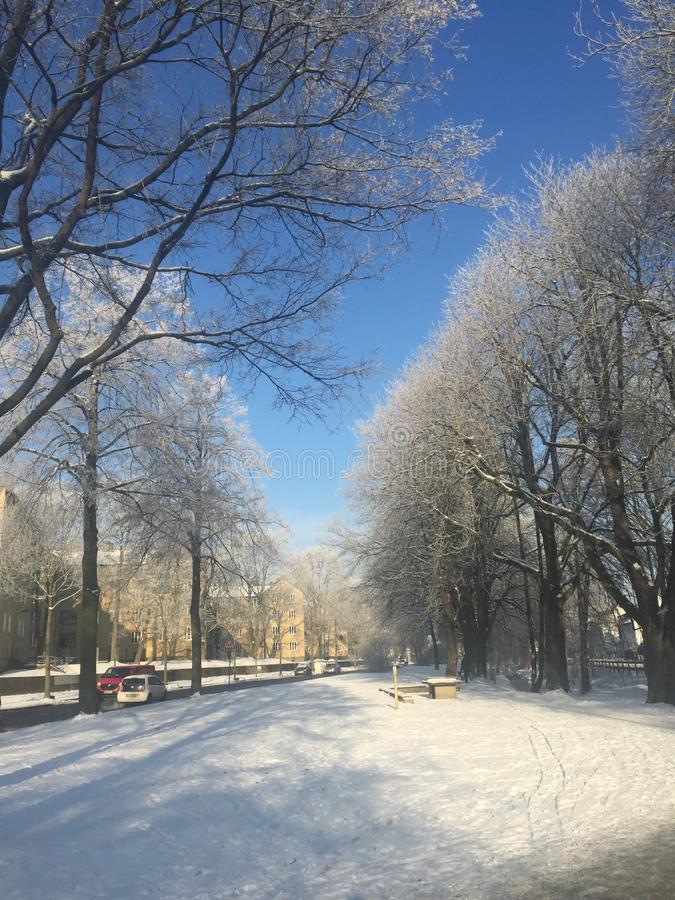 Kassel-Winterzeit lizenzfreies stockfoto