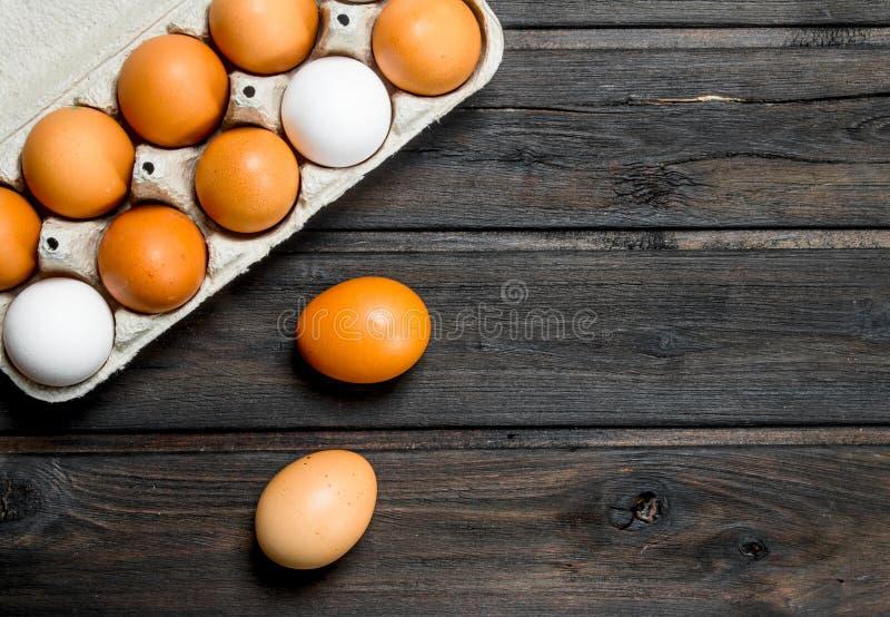 Kassett av nya ägg arkivfoton