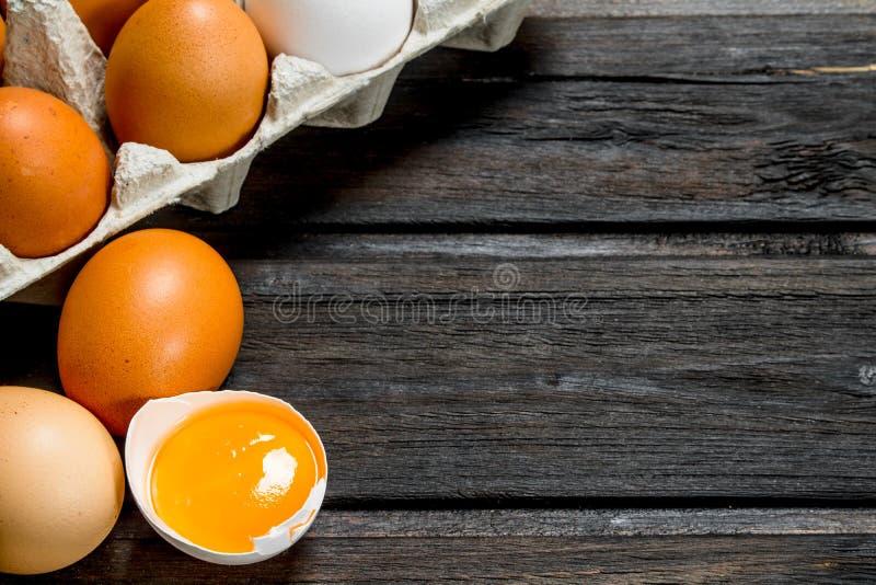 Kassett av nya ägg arkivbild