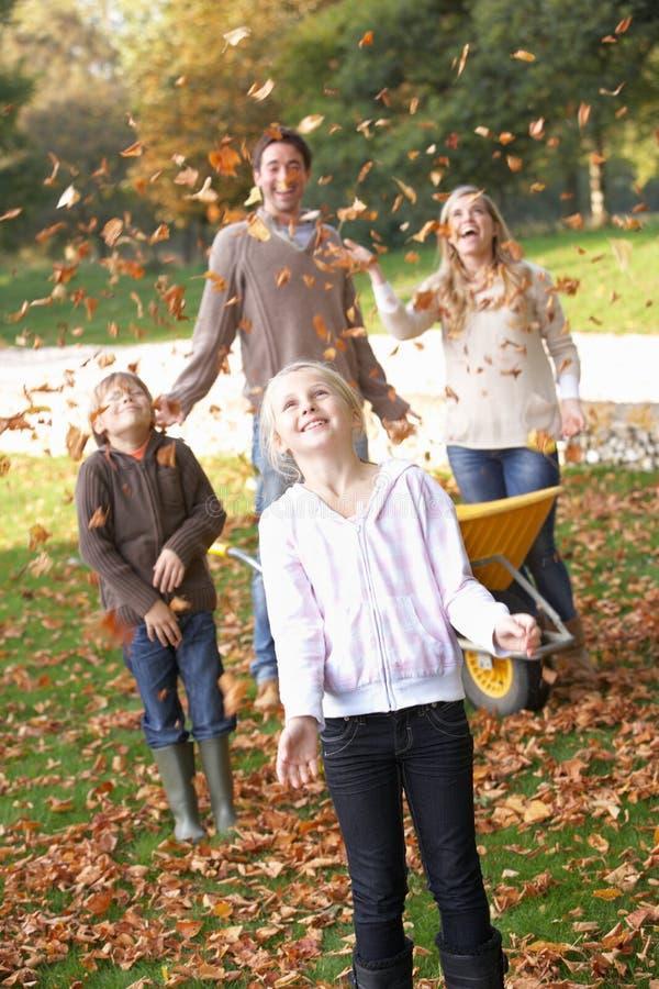 kasta för leaves för lufthöstfamilj royaltyfri fotografi