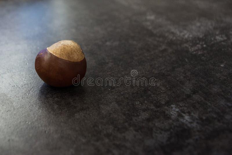 Kastanie auf einer grauen, strukturierten Oberfläche lizenzfreie stockfotos