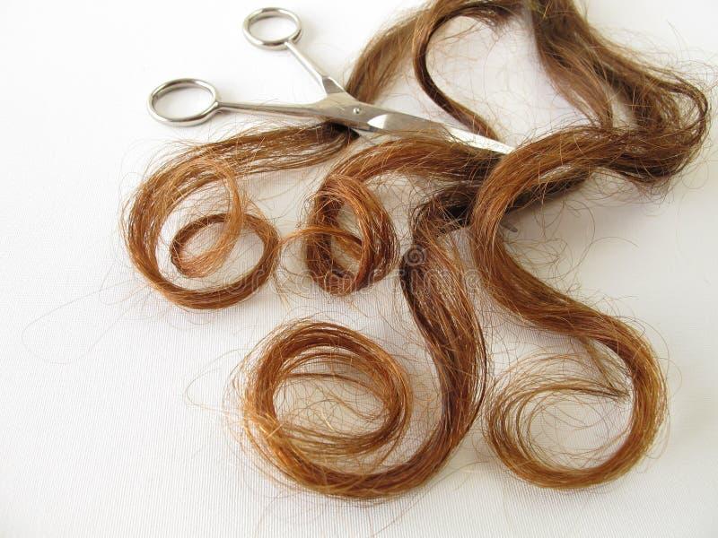 Kastanje-bruin haar en een schaar stock fotografie