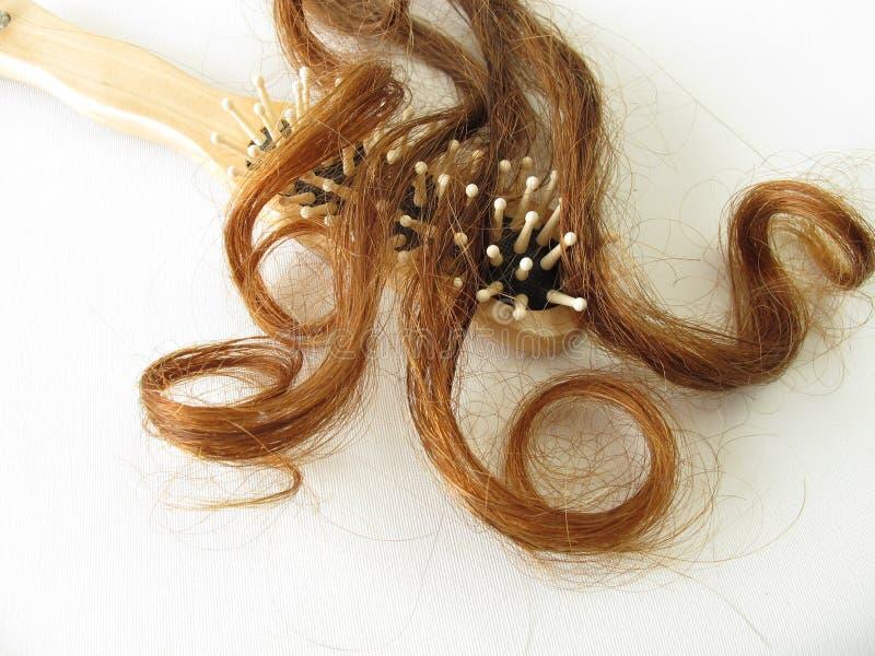 Kastanje-bruine haarbundel en haarborstel royalty-vrije stock afbeeldingen