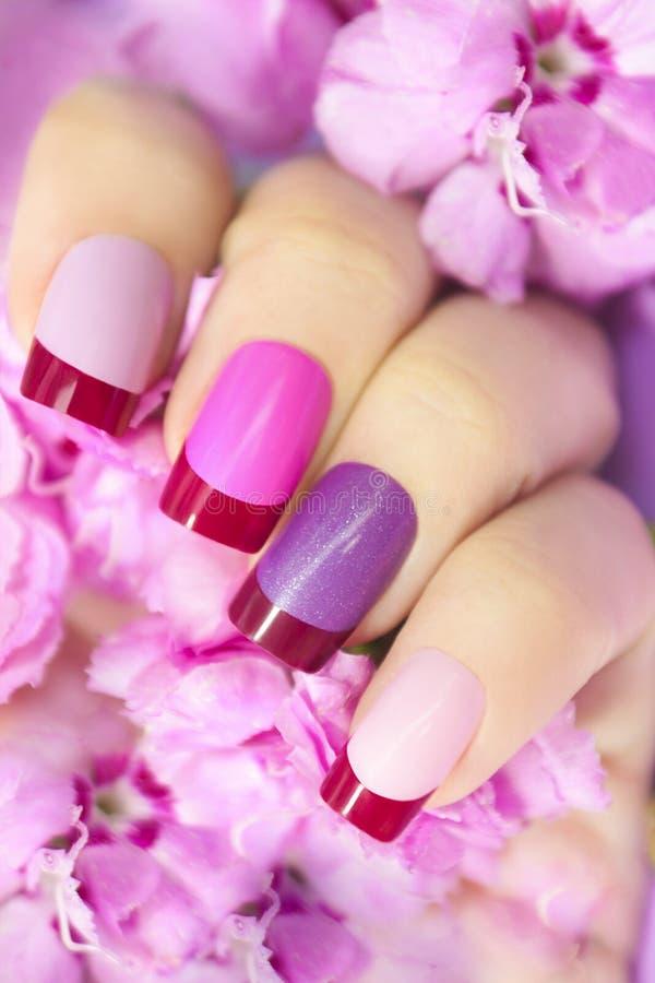 Kastanjebruine roze multicolored Franse manicure stock afbeelding