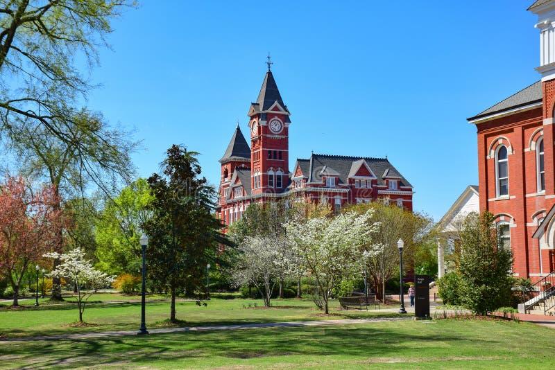 Kastanjebruine Universitaire Campus stock foto's