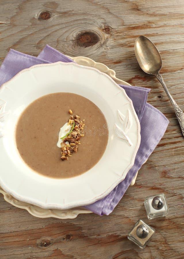 Kastanjebrun soup royaltyfria foton