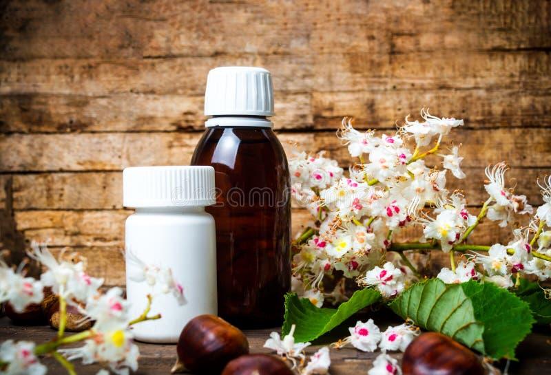 Kastanjebruna tinktur- och blomningblommor arkivfoto
