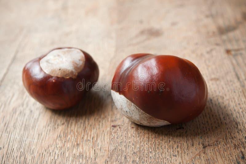 Kastanjer på träbakgrund - frukt av Aesculushippocastanumträdet arkivbild