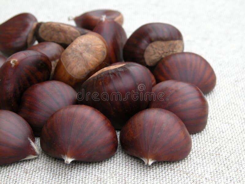 Download Kastanjes stock foto. Afbeelding bestaande uit fruit, kastanjes - 285506