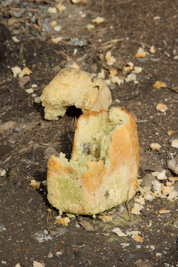 Kastat ut stycke av ruttet bröd som täckas med formen royaltyfri bild