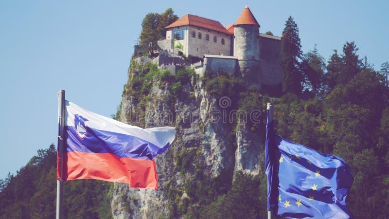 Kasteel op de Heuvel dichtbij Meer Afgetapt Slovenië stock foto's