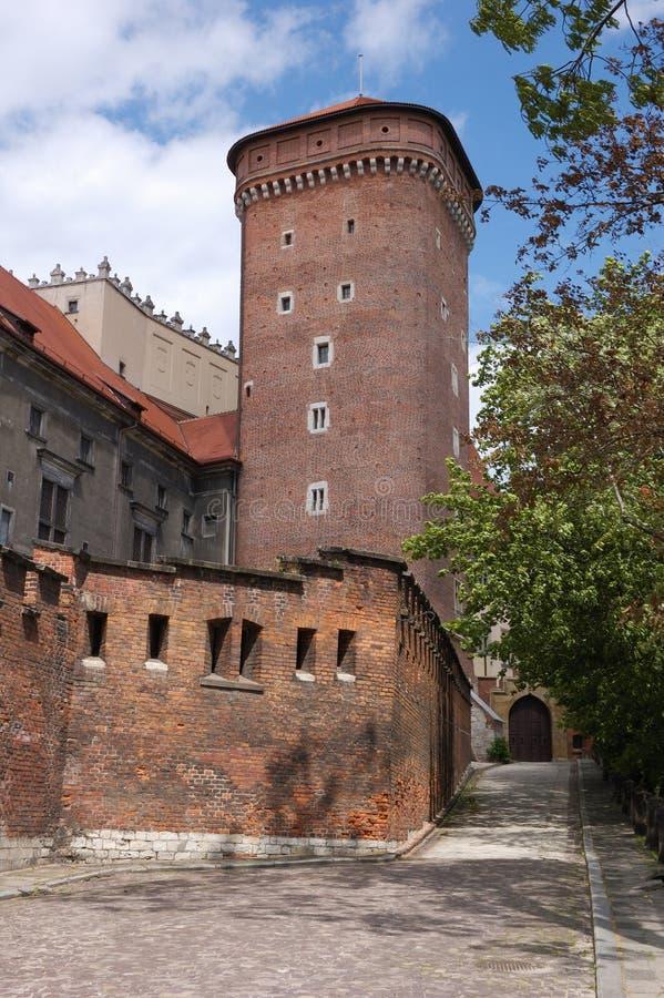 Kasteel Polen - Wawel stock afbeeldingen