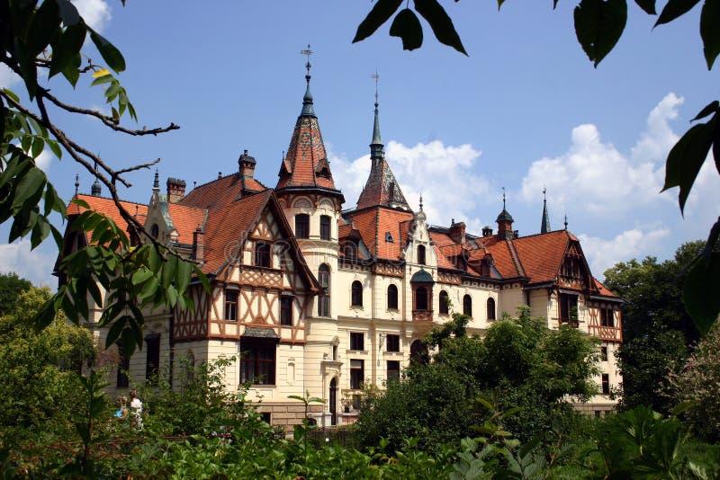Kasteel Tsjech stock foto