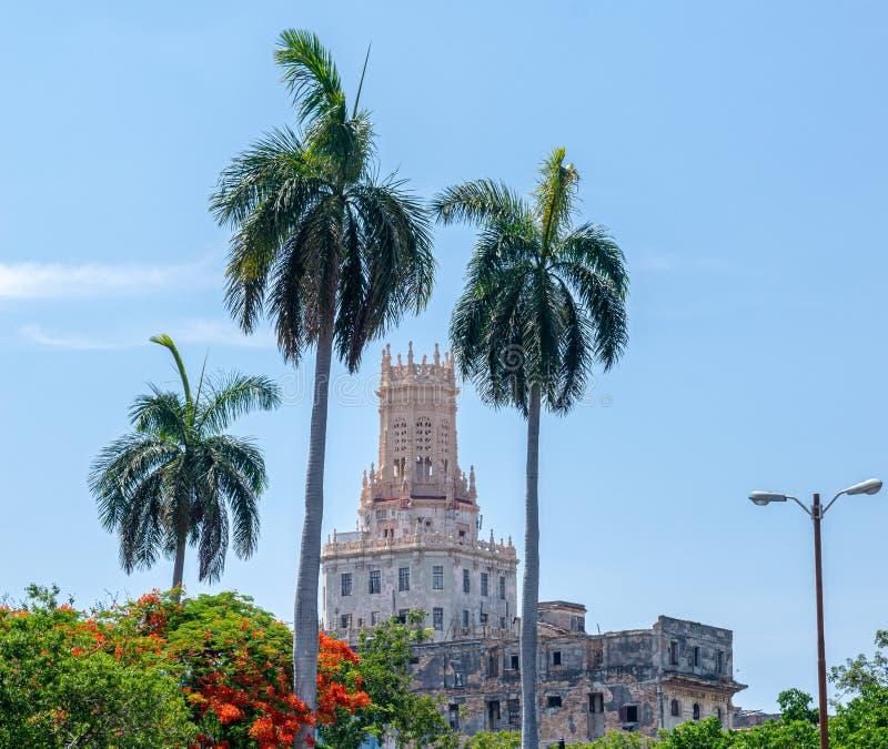 Kasteel tussen twee palmen stock fotografie