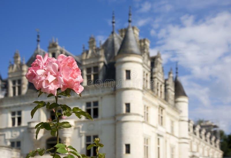 Kasteel van Chenonceaux, de Vallei van de Loire stock fotografie