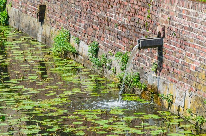 Kasteelgracht met regenwaterinham royalty-vrije stock fotografie