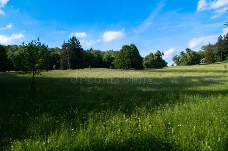 Kasteelpark Smolenice royalty-vrije stock foto's