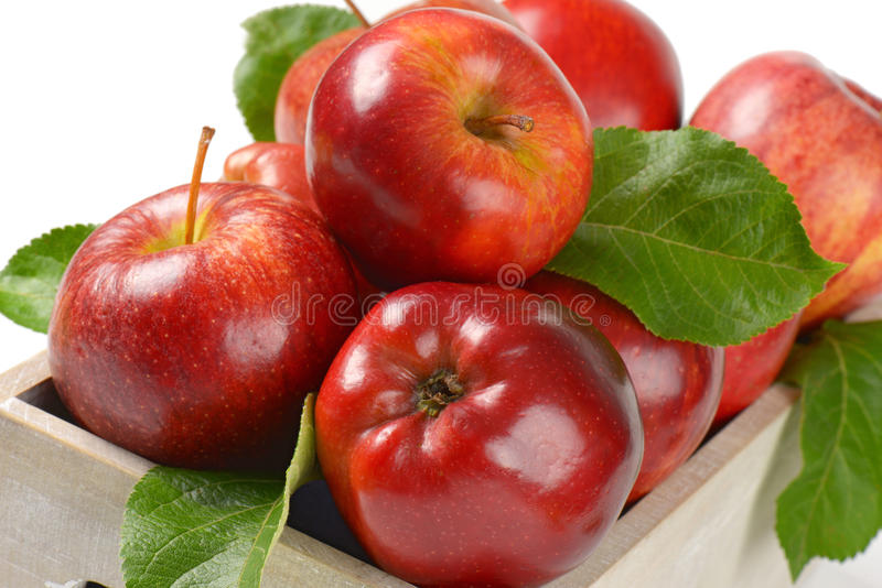 Kasten Äpfel stockbild