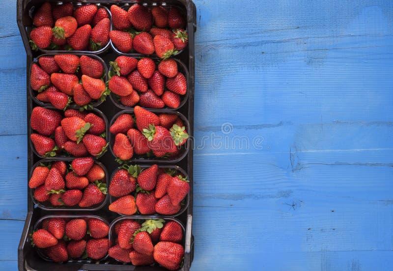 Kasten frische reife perfekte Erdbeeren auf blauem rustikalem hölzernem Hintergrund lizenzfreie stockbilder