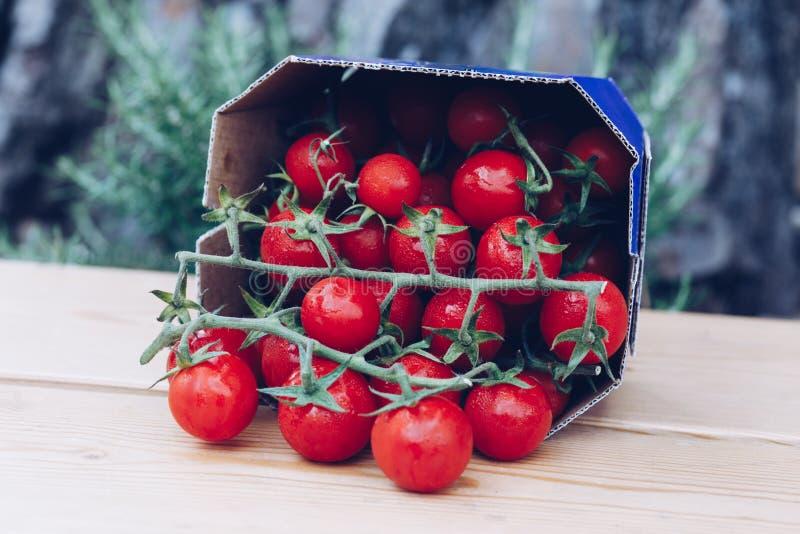 Kasten neue reife rote Tomatenkirschcocktailart für Verkauf in einem Markt stockbilder