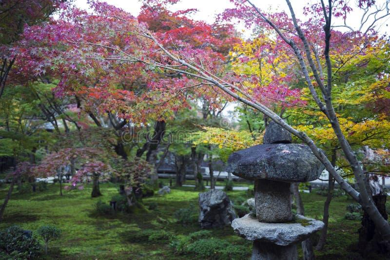 Kasuga doro或石头灯笼在秋天期间的鸡爪枫庭院里在Enkoji寺庙,京都,日本 免版税库存照片