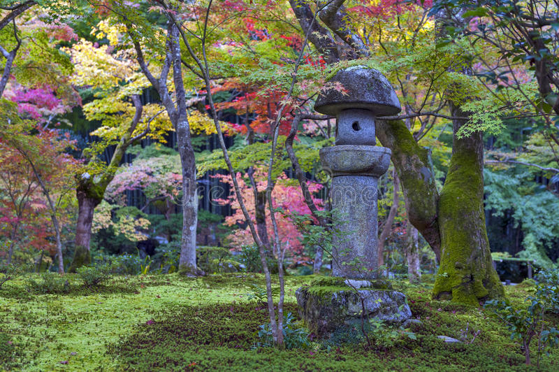 Kasuga doro或石头灯笼在秋天期间的鸡爪枫庭院里在Enkoji寺庙,京都,日本 免版税图库摄影