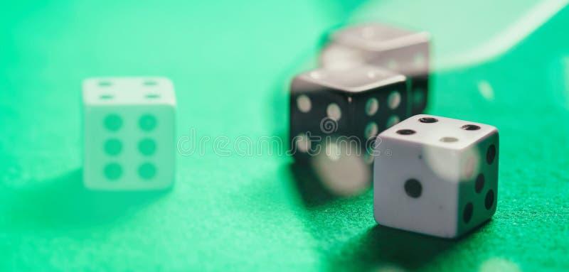 Kasyno, uprawia hazard Białe i czarne kostki do gry na zieleni czuli abstrakcjonistycznego tło fotografia stock