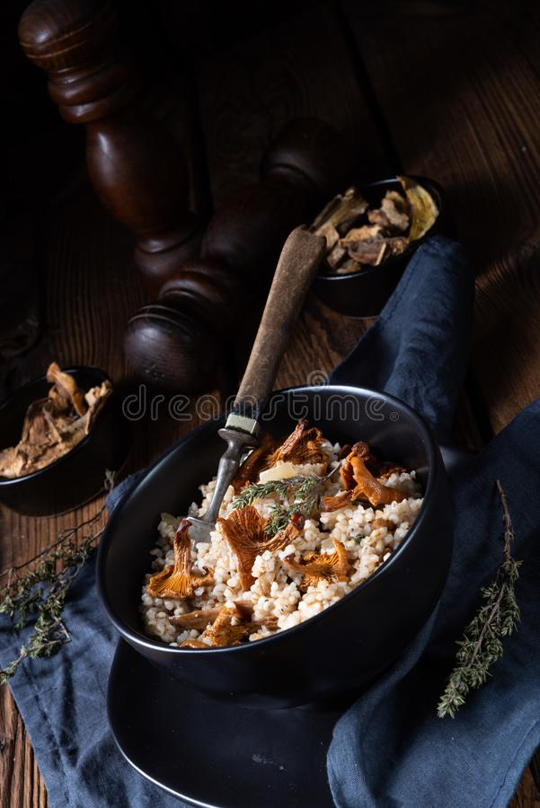 Kaszotto-从大麦少量的擦亮剂意大利煨饭用蘑菇 免版税库存图片