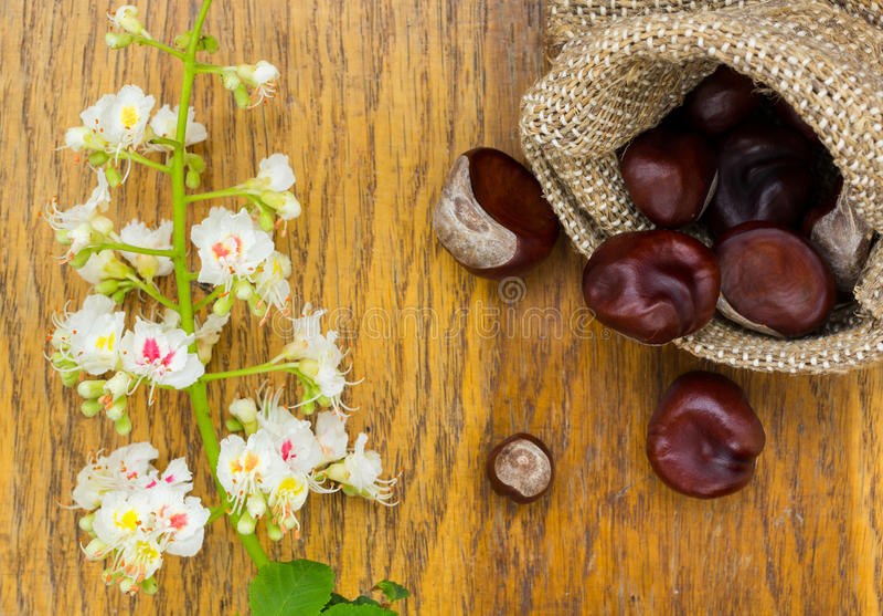 Download Kasztany W Burlap I Kwiacie Na Drewnie Textured Zdjęcie Stock - Obraz złożonej z torba, zdrowy: 53781450