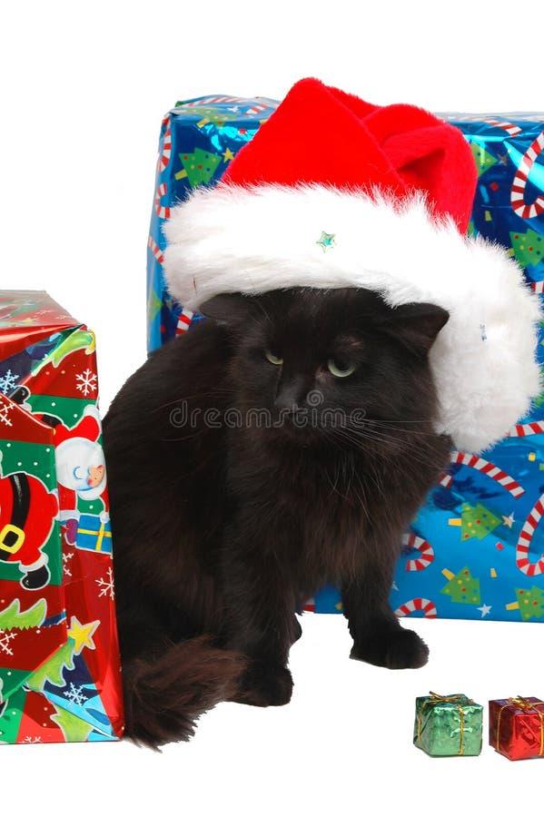 Kat 6 van Kerstmis royalty-vrije stock afbeeldingen