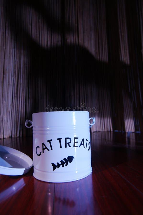 Kat die burgler rond kat de heimelijk neemt behandelt royalty-vrije stock foto