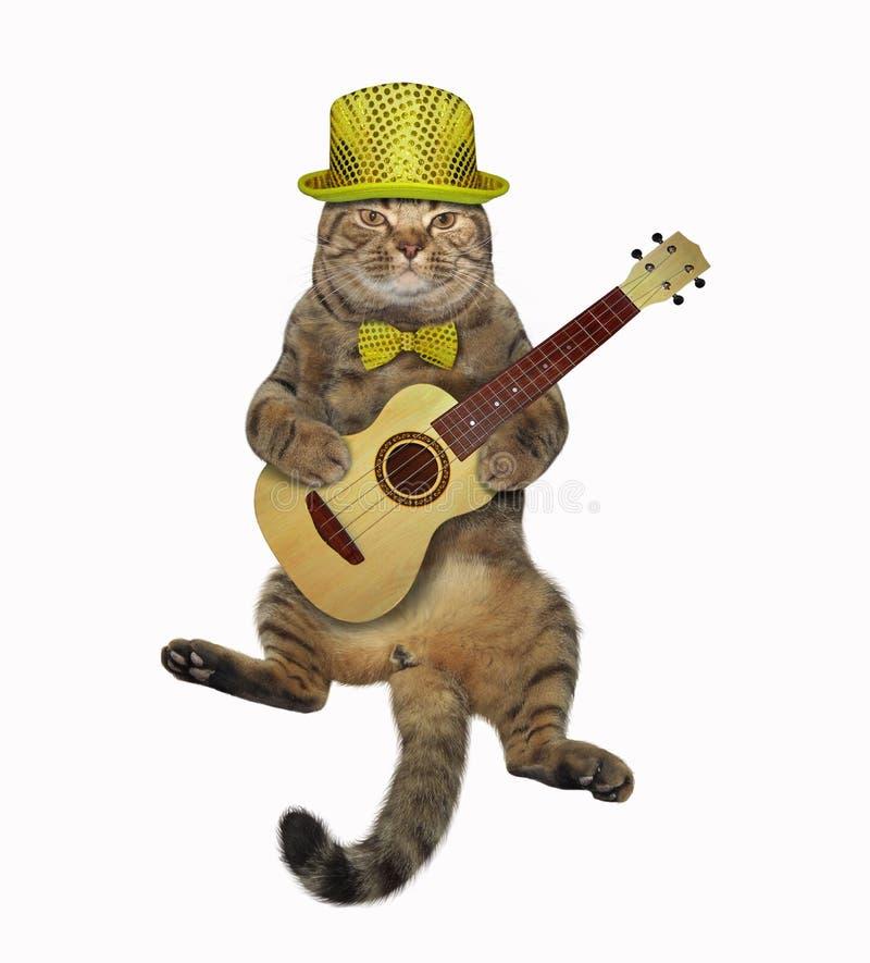 Kat die de gitaar spelen royalty-vrije stock foto