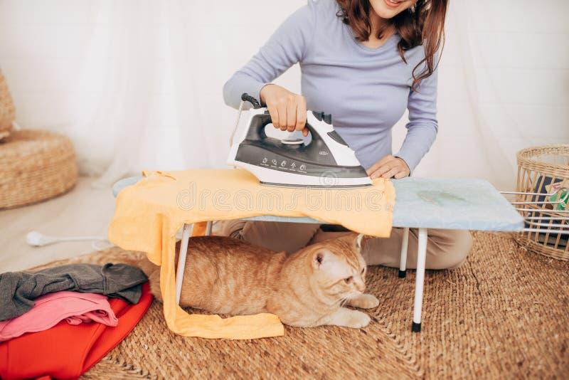 Kat die onder strijkplank thuis liggen royalty-vrije stock afbeeldingen