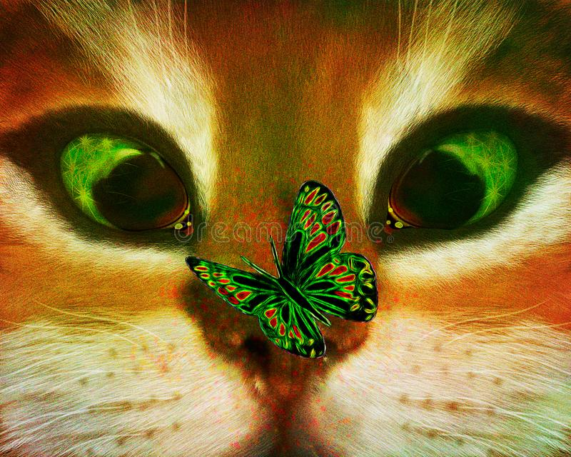 Kat en een onbeschofte vlinder stock afbeeldingen