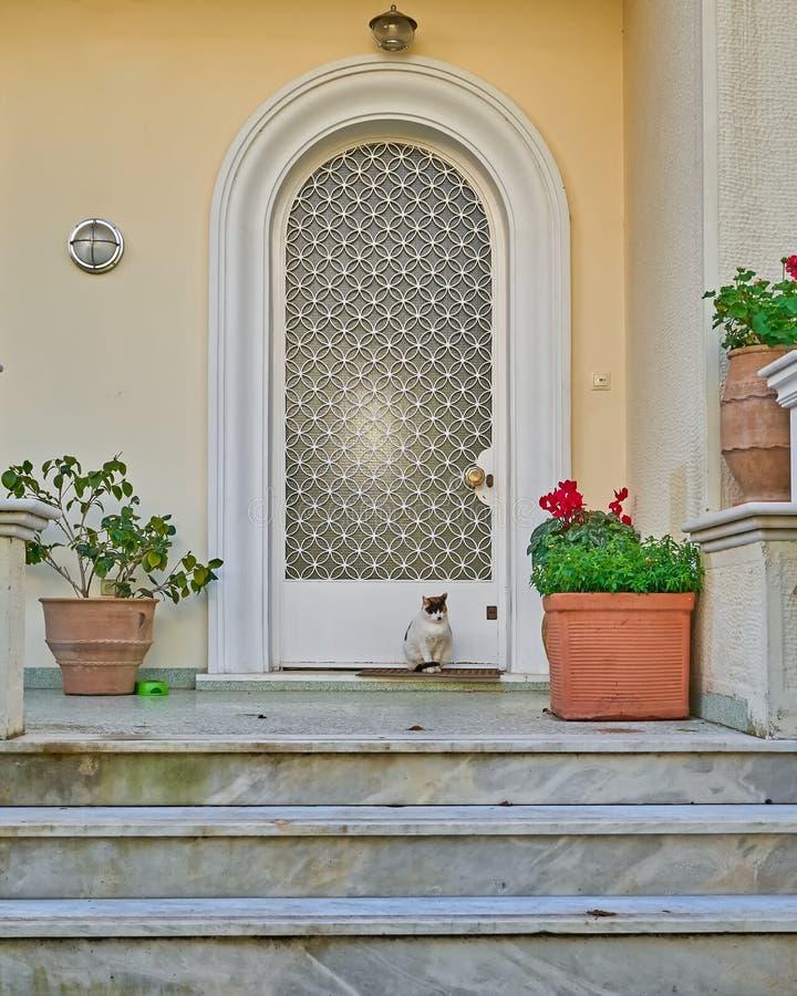 Kat en haar elegante huisingang stock fotografie