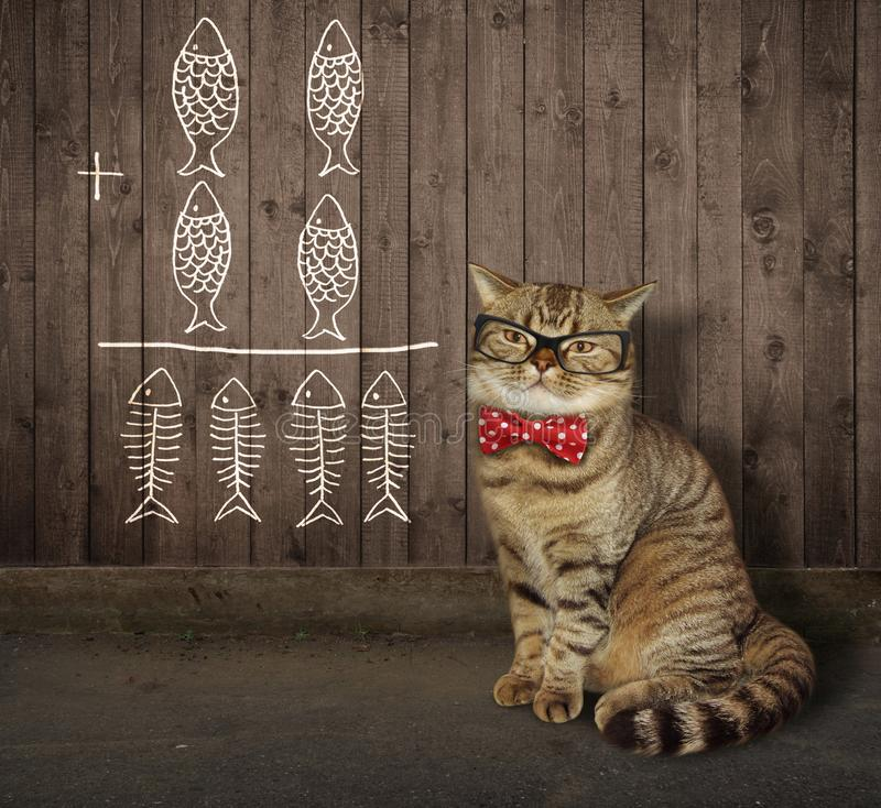 Kat in glazen dichtbij een omheining 2 royalty-vrije stock afbeelding