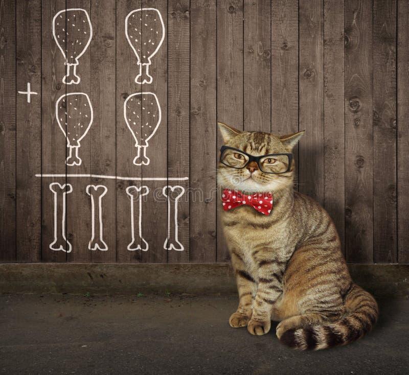 Kat in glazen dichtbij een omheining royalty-vrije stock foto's