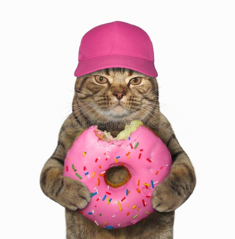 Kat in GLB met roze gebeten doughnut stock afbeelding