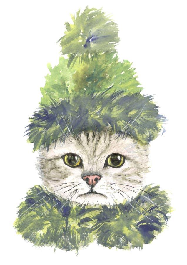Kat in groene hoed en sjaal royalty-vrije stock afbeeldingen