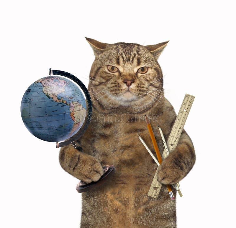 Kat met bol en heerser royalty-vrije stock afbeelding
