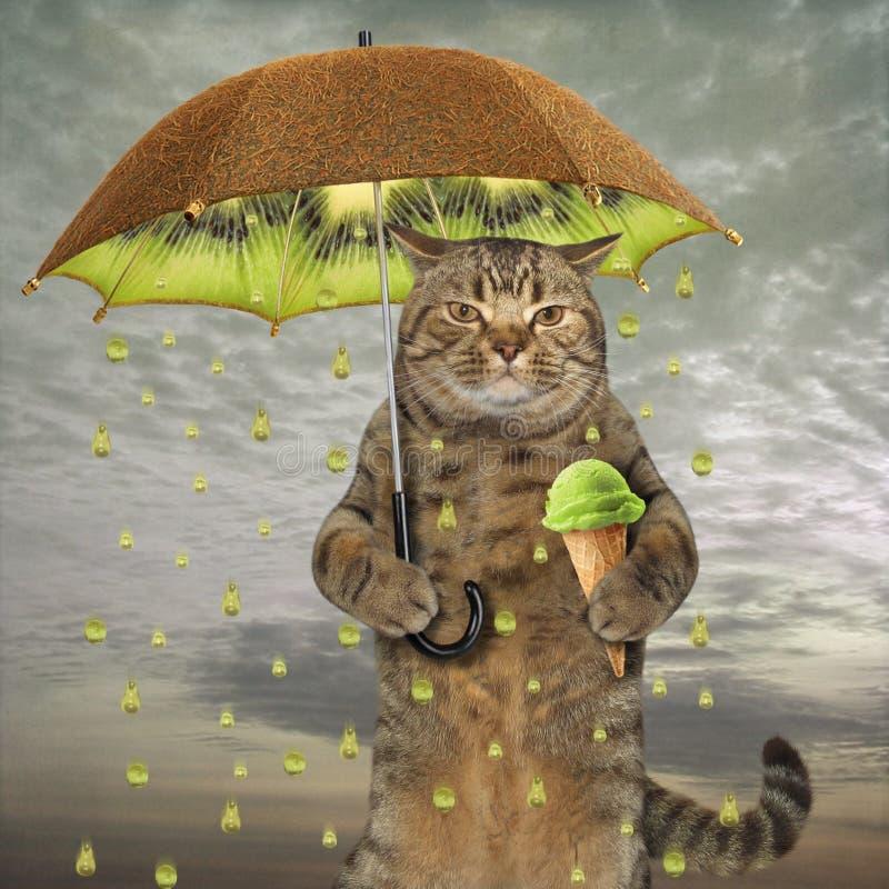 Kat met een kiwiparaplu stock illustratie