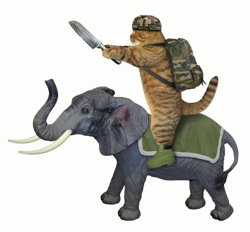 Kat met een mes op een olifant royalty-vrije illustratie