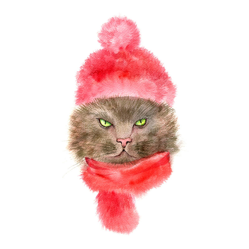 Kat met gebreid GLB en sjaal stock illustratie