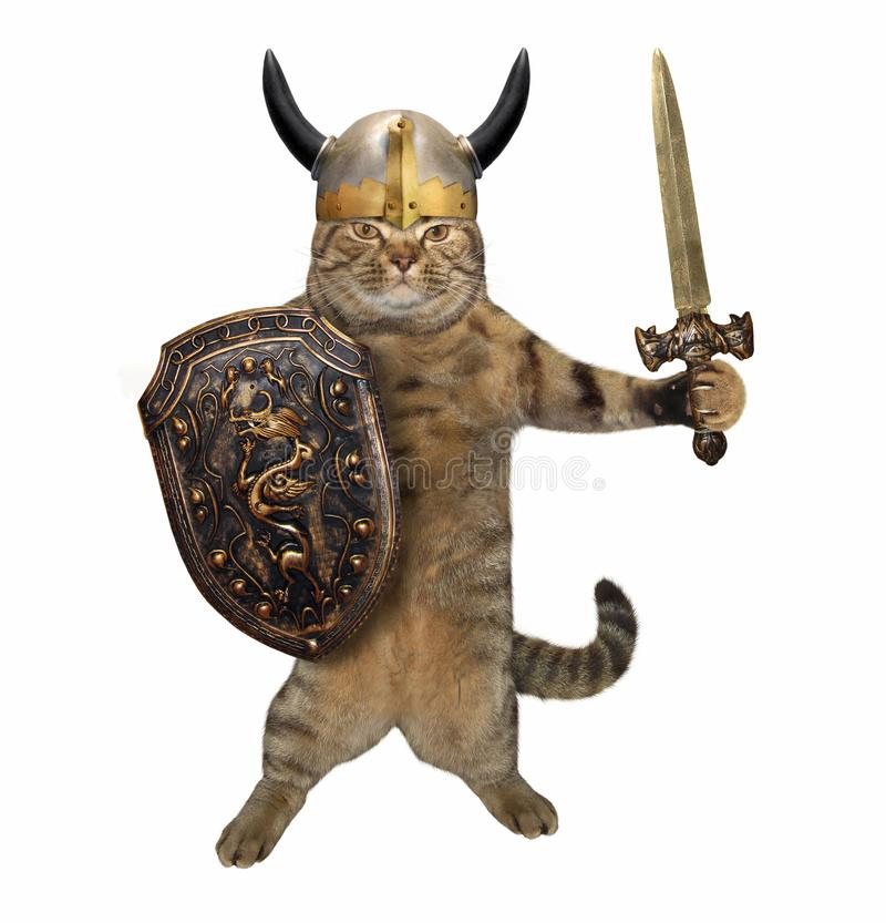 Kat met zwaard en schild royalty-vrije stock afbeelding