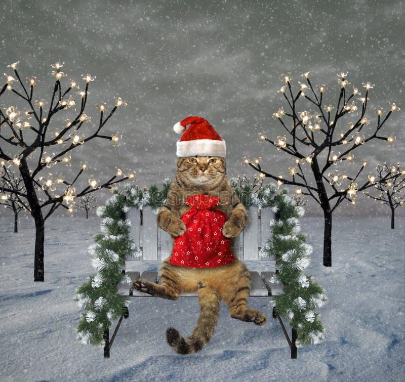 Kat op een bank en Nieuwjaar royalty-vrije stock afbeelding