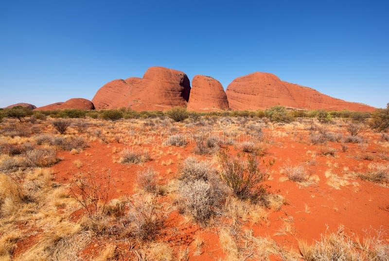 Kata Tjuta das Olgas, Nordterritorium, Australien lizenzfreies stockbild
