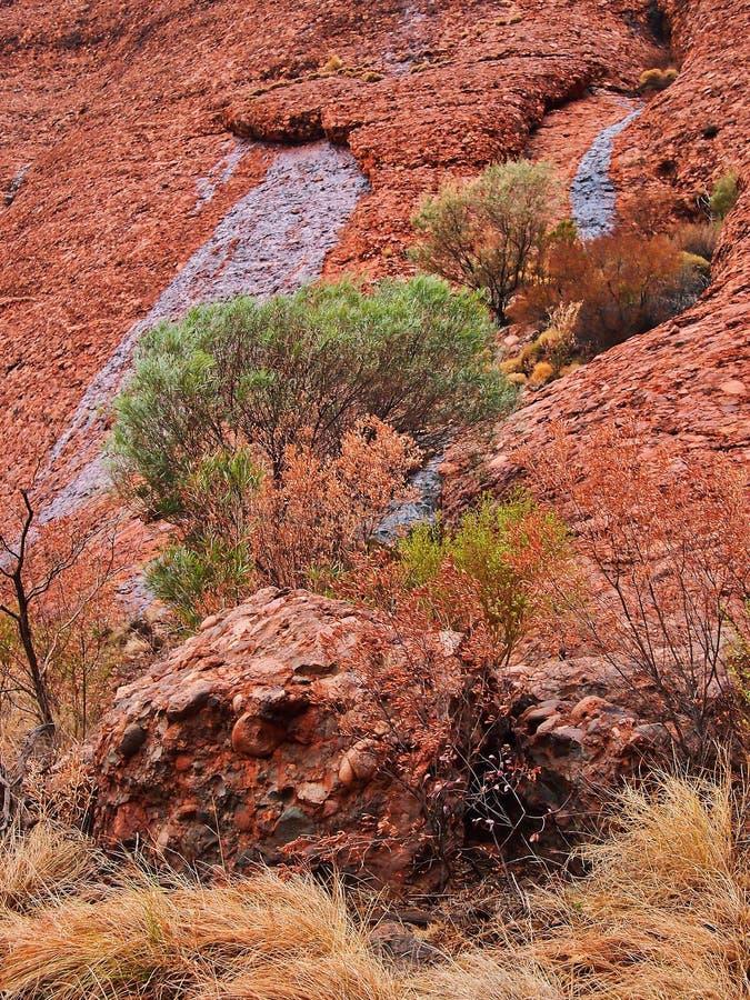 Kata Tjuta Red Rocks, Nordterritorium, Australien lizenzfreie stockfotos